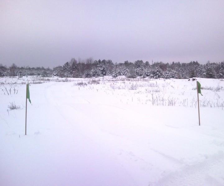Zmotka zimą