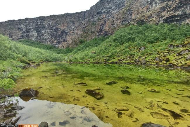 Kanion Ásbyrgi - niesamowita zieleń