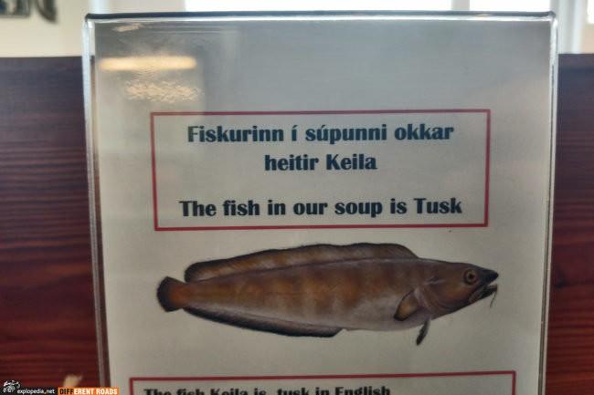 Zupa rybna z Tuska w ÁLFACAFÉ